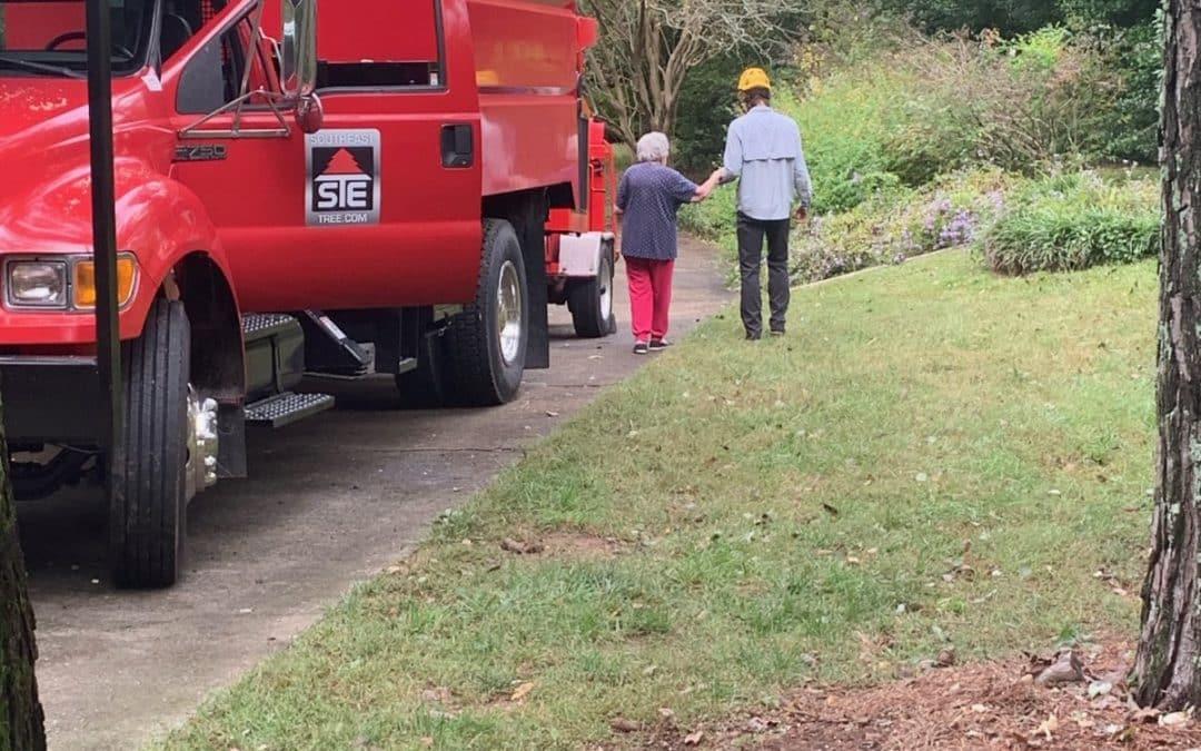 John Creek Tree Service Company Offers Winter Tree Assessment